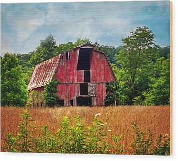 Barn 23 Wood Print by Marty Koch