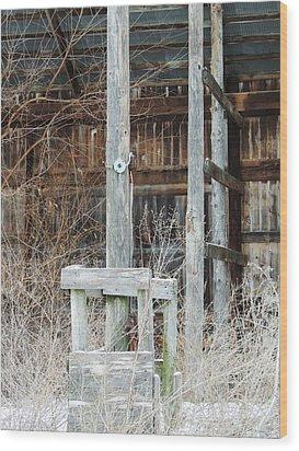 Barn #39 Wood Print by Todd Sherlock