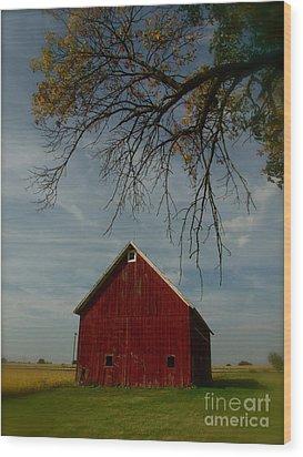 Barn And Box Elder Wood Print