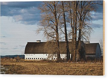 Barn And Trees Wood Print by Ron Roberts
