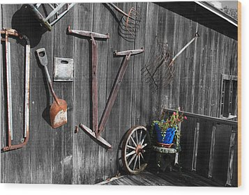 Barn Art No.3 - Color On Black And White Wood Print by Janice Adomeit
