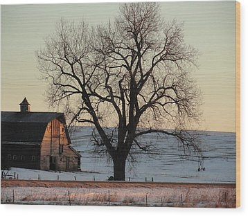 Barn At Sunrise Wood Print by Renie Rutten