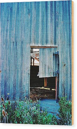 Barn Door... Monroe Co. Michigan Wood Print by Daniel Thompson