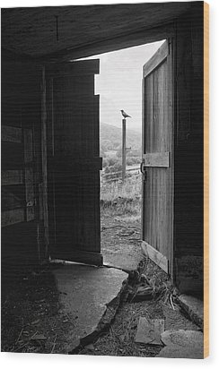 Barn Door - View From Within - Old Barn Picture Wood Print