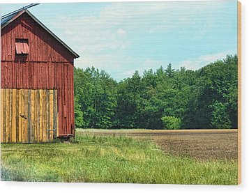 Barn Green Wood Print by Kenneth Feliciano