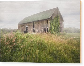 Wood Print featuring the photograph Barn In A Misty Field by Gary Heller