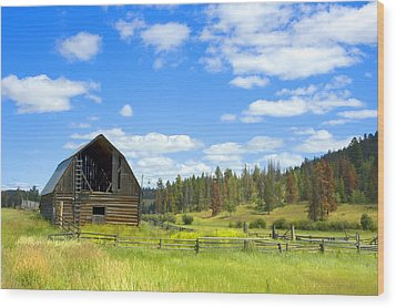 Barn Wood Print by Michele Wright