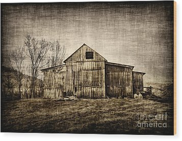 Barn On Farm Wood Print by Dan Friend