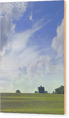 Barn On Top Of The Hill Wood Print by Mike McGlothlen
