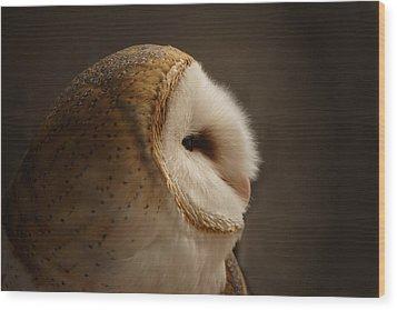 Barn Owl 3 Wood Print