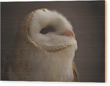Barn Owl 4 Wood Print