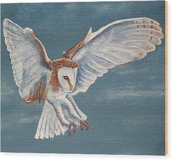 Barn Owl Wood Print by Dan Wagner