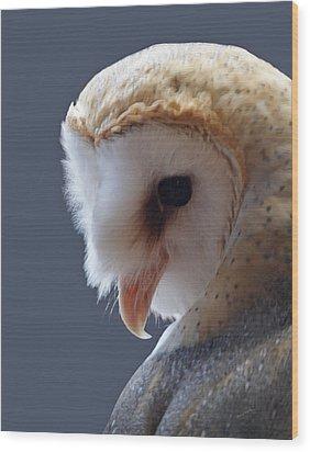Barn Owl Dry Brushed Wood Print by Ernie Echols