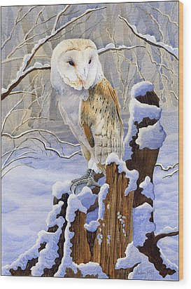 Barn Owl In Snow Wood Print by Anthony Forster