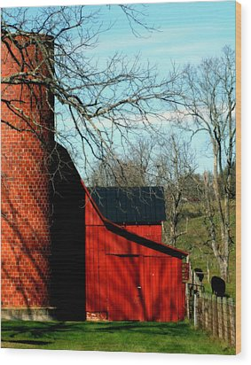 Barn Shadows Wood Print by Karen Wiles