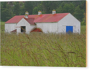 Barn With Blue Door Wood Print by Art Block Collections