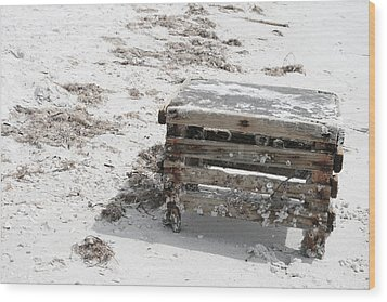 Barnacles On The Beach Wood Print by Georgia Fowler