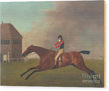 Baronet With Sam Chifney Up Wood Print by George Stubbs