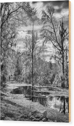 Wood Print featuring the photograph Barr Hammock Preserve  by Howard Salmon