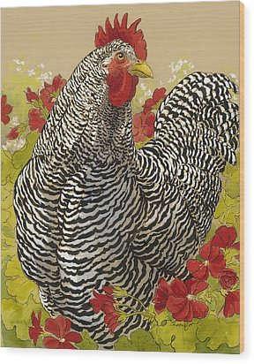 Barred Rock Rooster In The Geraniums Wood Print by Tracie Thompson