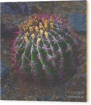 Barrel Cactus  ... Wood Print by Chuck Caramella