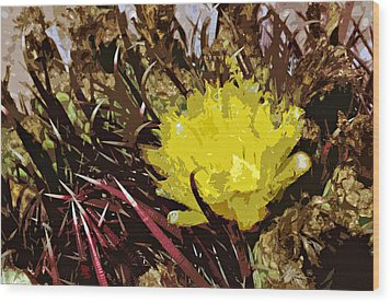 Barrel Cactus Bloom Wood Print by Jack McAward