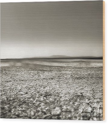 Barstow Dry Lake Bed  Wood Print by Gregory Dyer