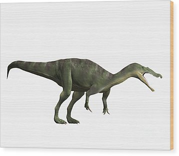 Baryonyx Walkeri, Early Cretaceous Wood Print by Nobumichi Tamara