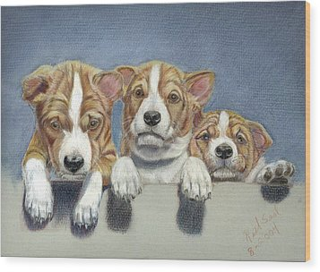 Basenji Puppies Wood Print