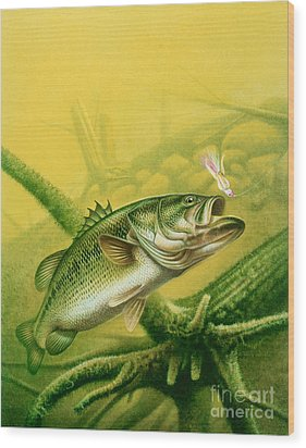 Bass And Jig Wood Print by jon Q Wright