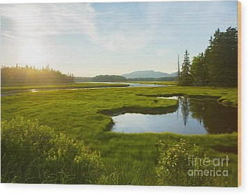 Bass Harbor Marsh At Dusk Wood Print