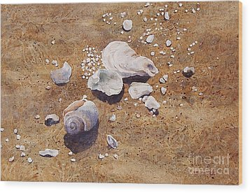 Wood Print featuring the painting Bass River Seashells by Karol Wyckoff