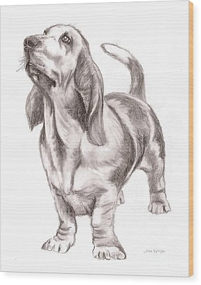Wood Print featuring the drawing Basset Hound Dog by Nan Wright