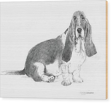 Basset Hound Wood Print by Jim Hubbard