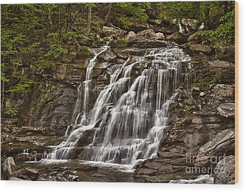 Wood Print featuring the photograph Bastion Falls - Catskills by Vicki DeVico
