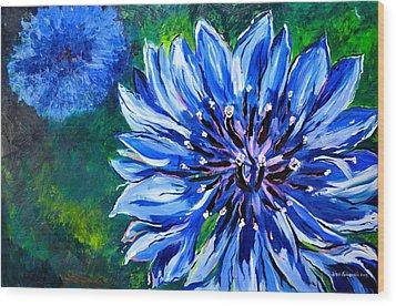 Batchelor Button Flower Wood Print by Lisa Fiedler Jaworski