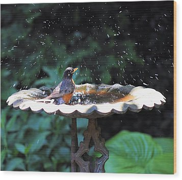 Bath Time Wood Print by Katherine White