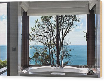 Bathroom With A View Wood Print