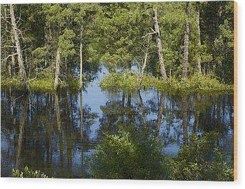 Batsto River Wood Print