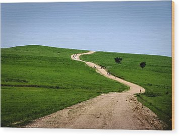 Battle Creek Road Teamwork Wood Print