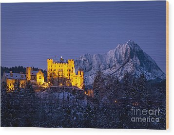 Bavarian Castle Wood Print by Brian Jannsen