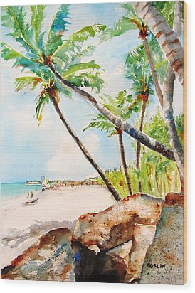 Bavaro Tropical Sandy Beach Wood Print