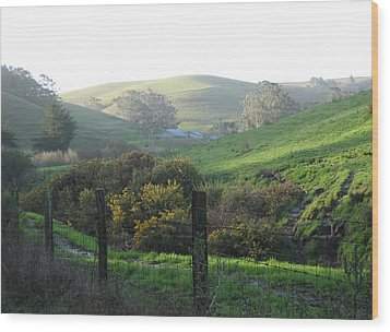 Wood Print featuring the drawing Bay Hill Road by Dianne Levy