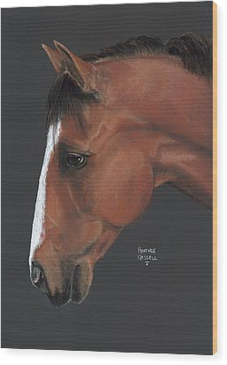 Bay Horse  Wood Print by Heather Gessell