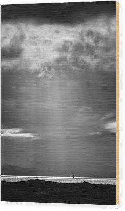 Bay Light Wood Print