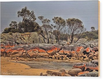 Bay Of Fires 2 Wood Print by Wallaroo Images