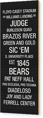 Baylor College Town Wall Art Wood Print