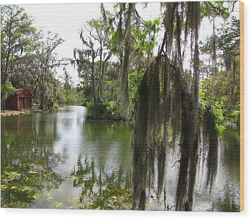 Wood Print featuring the photograph Bayou by Beth Vincent
