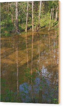 Bayou Reflections Wood Print by Connie Fox