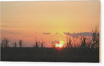 Wood Print featuring the photograph Bayou Sunset by John Glass
